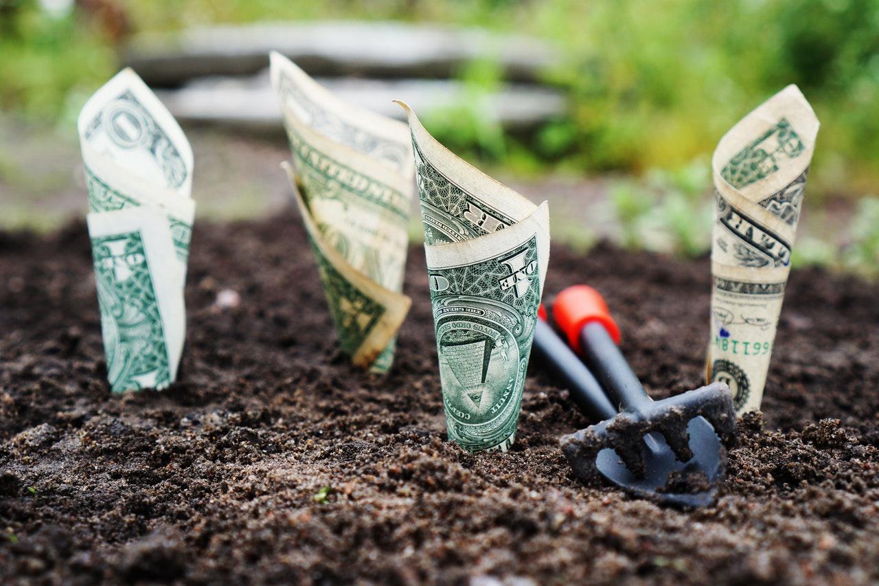 A colunista precisaria de uma Bettina para multiplicar o valor da multa. Foto: Pixabay